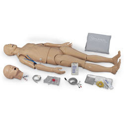Adult ALS Trainer with Two Arms