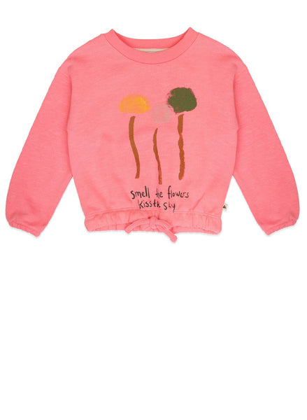 Ammehoela Sweatshirt | Philou.02 - Green Hearts Pink
