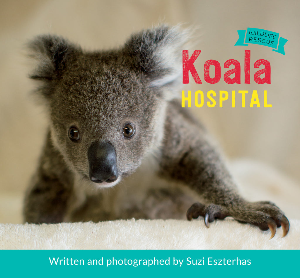 Koala Hospital // WBCTYS16 - Owlkids - Reading for kids and literacy resources for parents made fun. Books helping kids to learn.