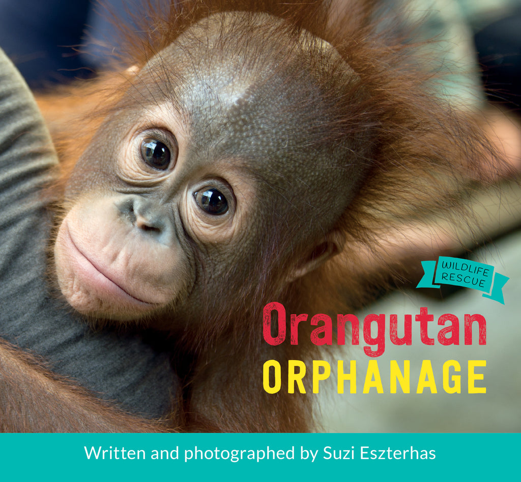 Orangutan Orphanage - Owlkids - Reading for kids and literacy resources for parents made fun. Books helping kids to learn.