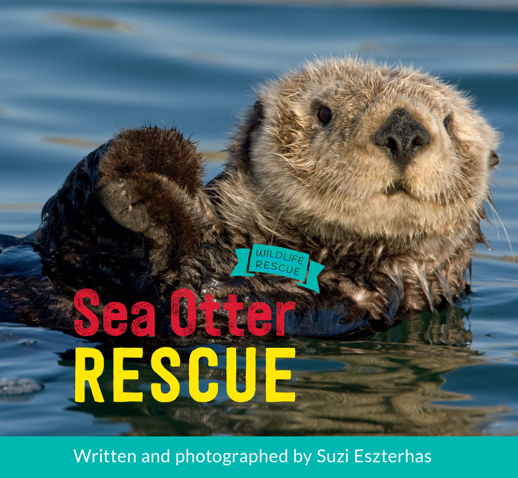 Sea Otter Rescue - Owlkids - Reading for kids and literacy resources for parents made fun. Books helping kids to learn.