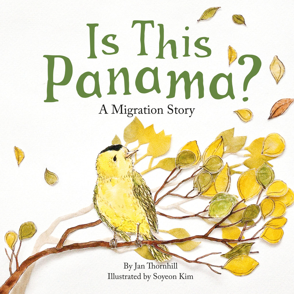 Is This Panama? - Owlkids - Reading for kids and literacy resources for parents made fun. Books helping kids to learn.