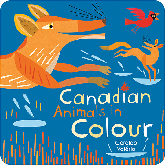 Canadian Animals in Colour