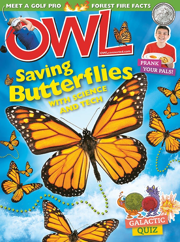 OWL Magazine - April 2019