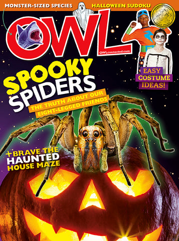 OWL Magazine - October 2018