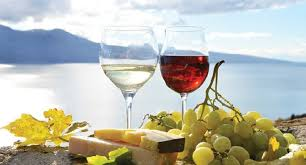 Level ONE virtual Greek wine course