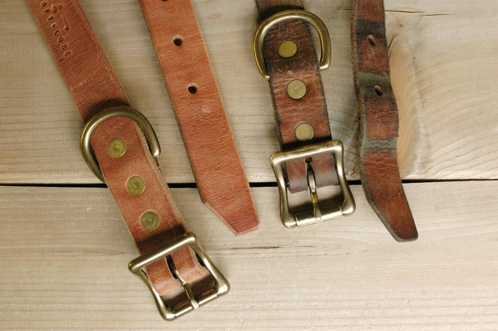 leather-dog-collars