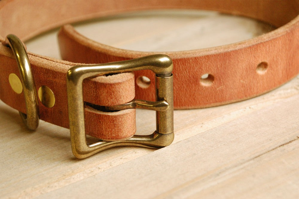 Solid Brass and Leather Collar