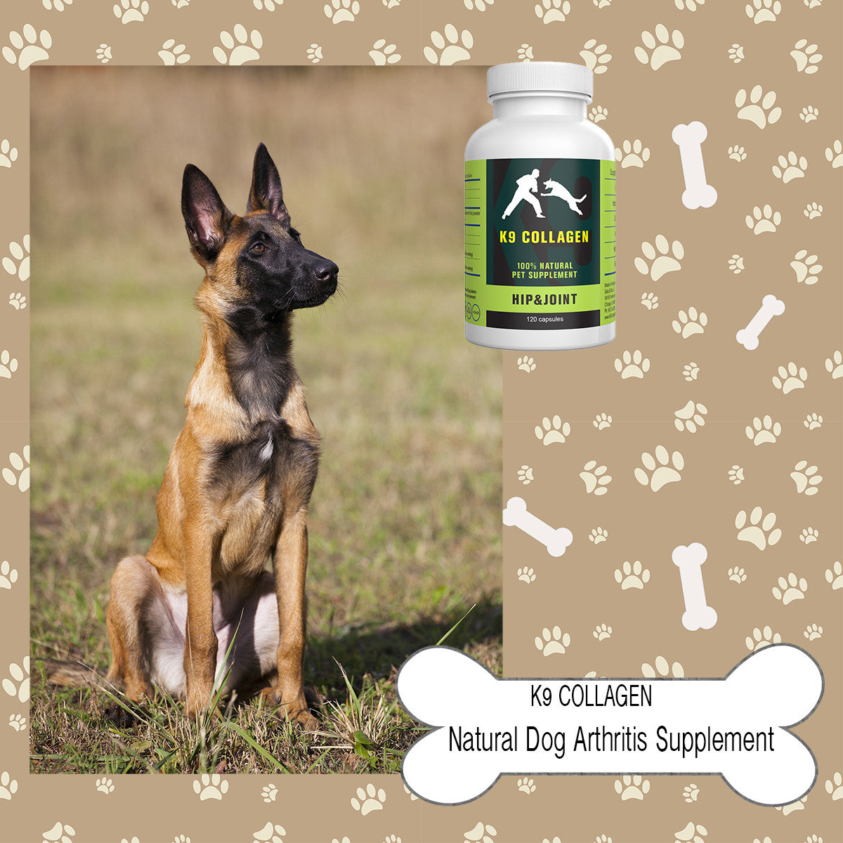 Joint Treats for Dogs- A Perfect Blend of Health and Taste for Your Canine Friend
