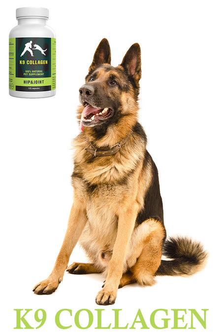 K9 Collagen Hip and Joint Supplement: The Best Joint Complete For Dogs