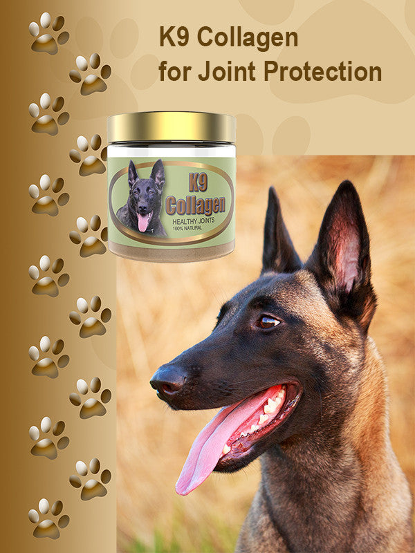 Review of K9 Collagen Hip and Joint Supplement
