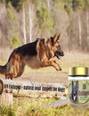 Healthy Dog - 4 Benefits of Dog Supplements For Joints Enriched Composed of Collagen