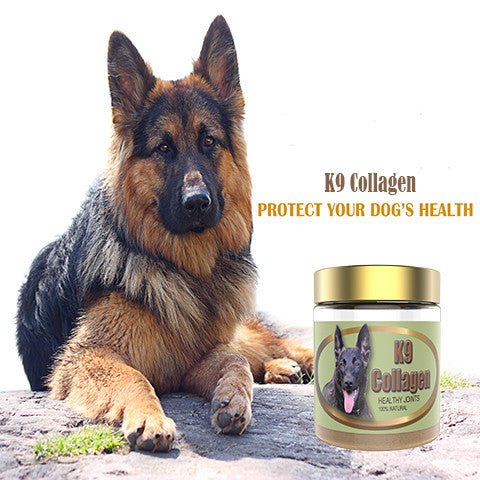 K9 Collagen Hip & Joint Supplements For Pet - A Review