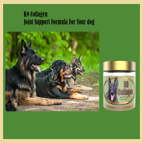 Avoid Your Dog's Joint Issues with K9 Collagen