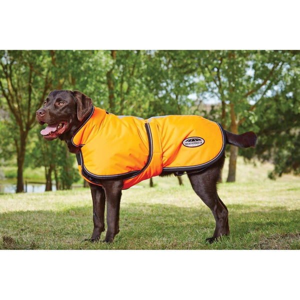 WeatherBeeta Reflective Parka with Belly Wrap 300D Dog Coat (Orange)