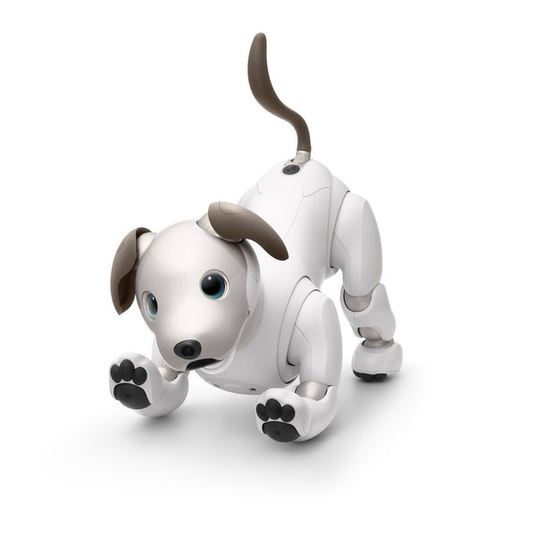 Sony aibo - First Litter Edition