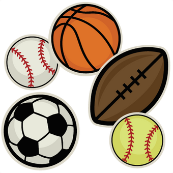 Types of Sports Ball Crazybadman carries