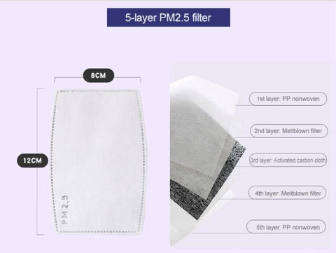 PM2.5 Disposable Filters