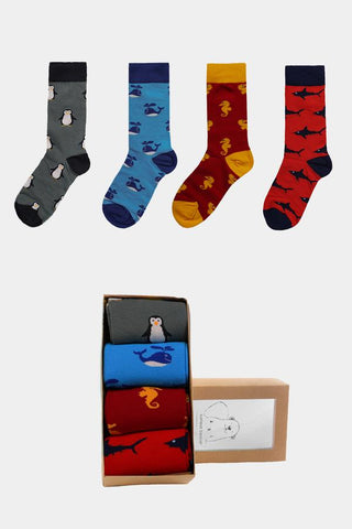 Jed North: Sea Socks Collection