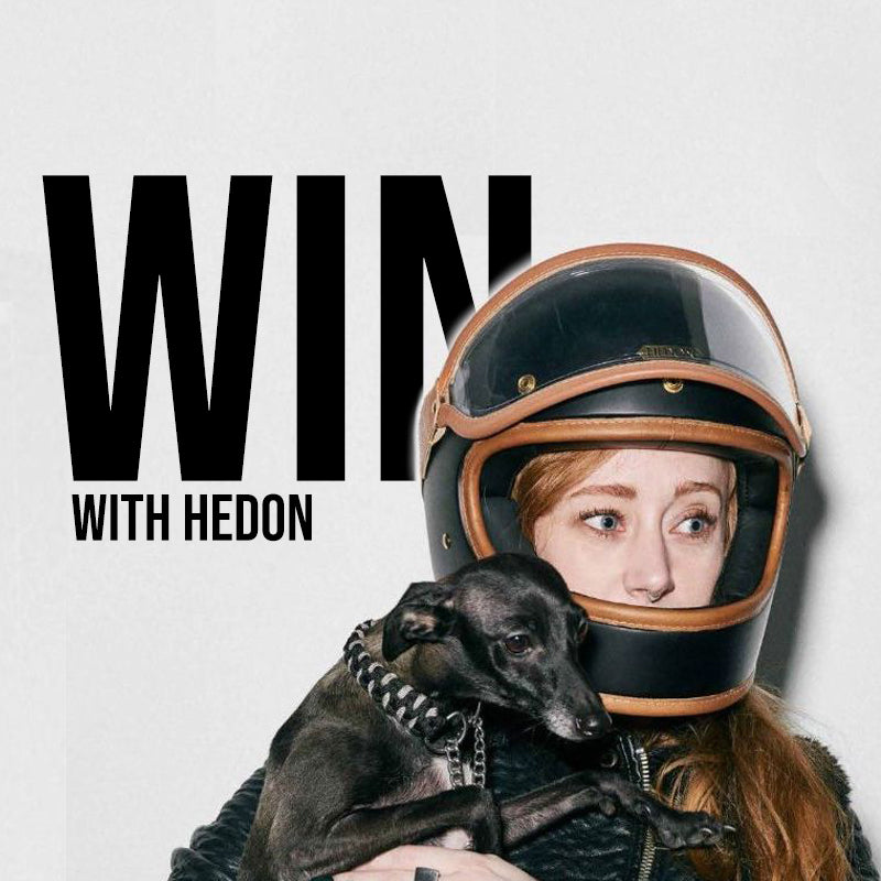 WIN With Hedon