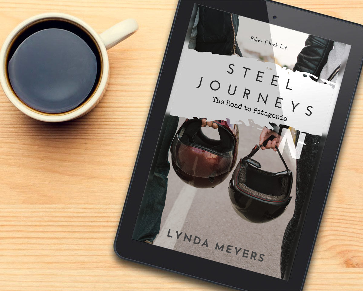 Steel Journeys book by Lynda Meyers