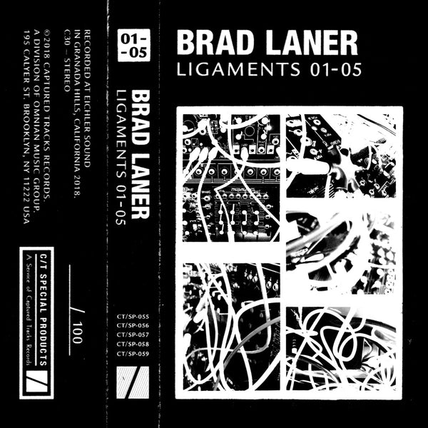 Ligaments 01 - 05