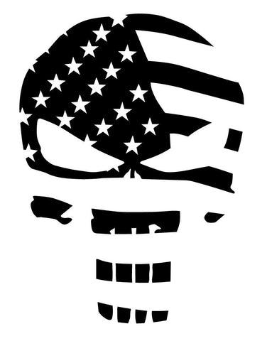Skull Punisher Flag