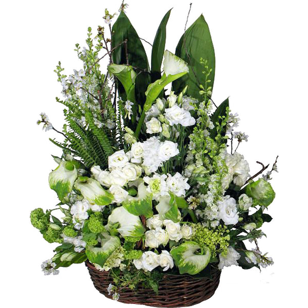 (display image: Funeral)