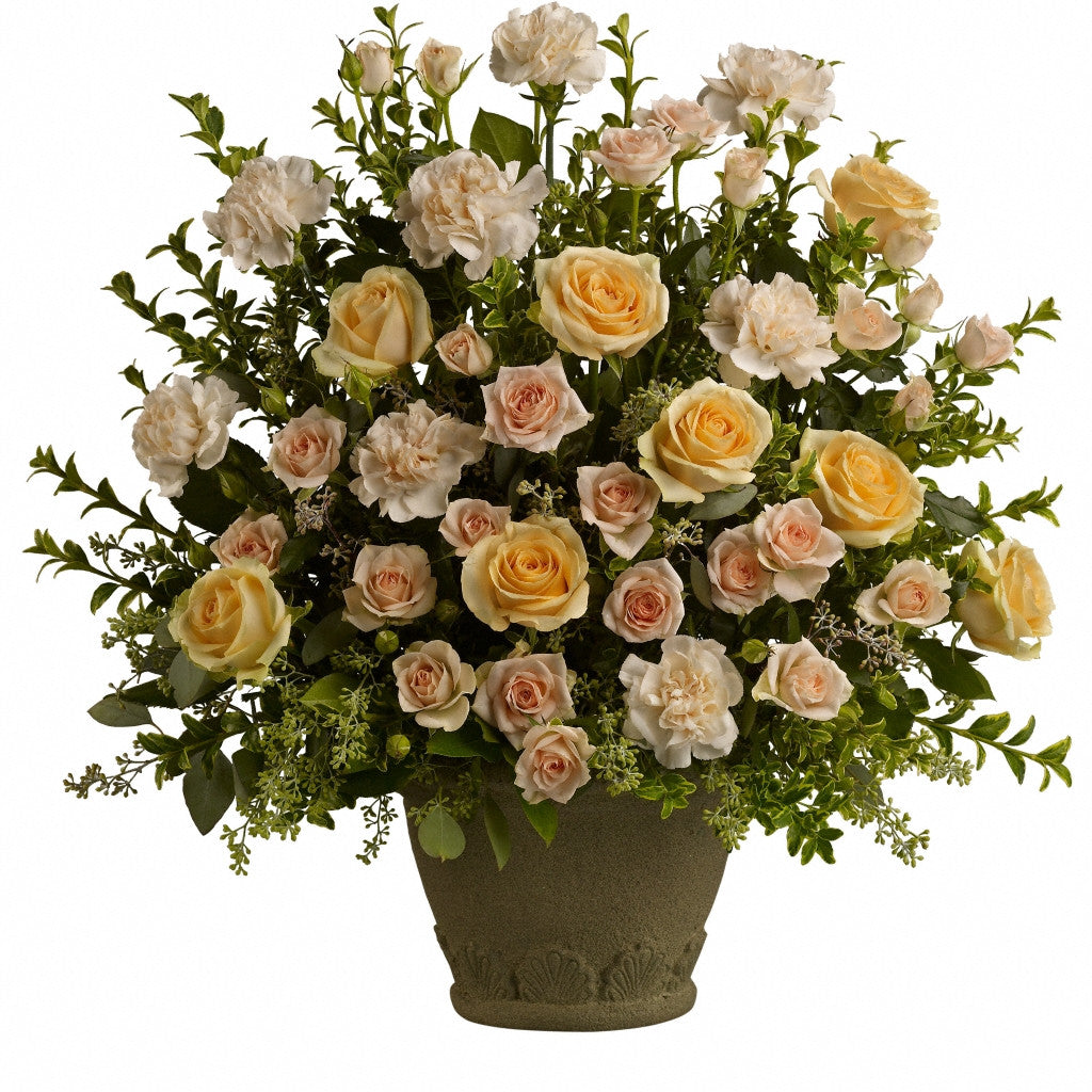 (display image: Teleflora's Rose Remembrance)