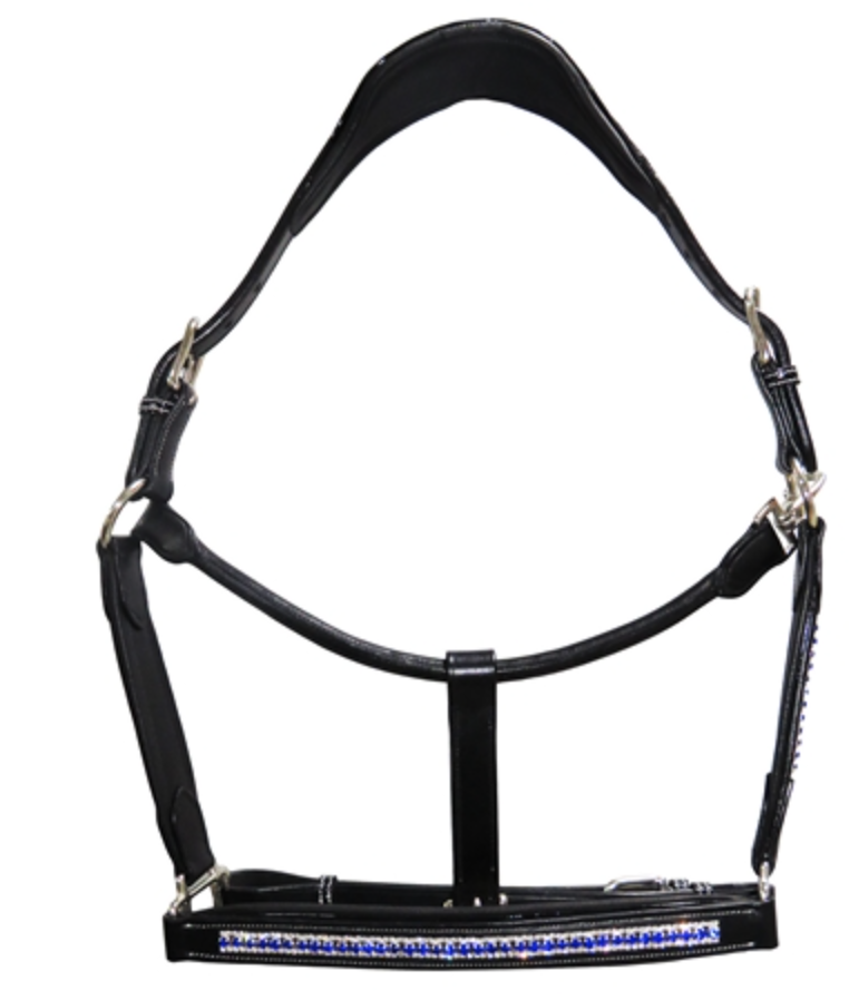 Henri de Rivel Padded Jewel Halter