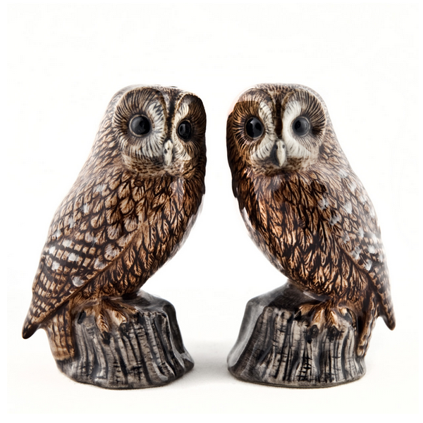Tawny Owl Salt and Pepper Set