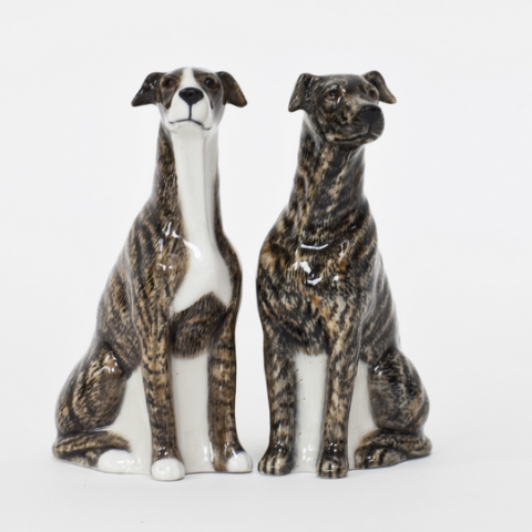 Greyhound Salt and Pepper Set