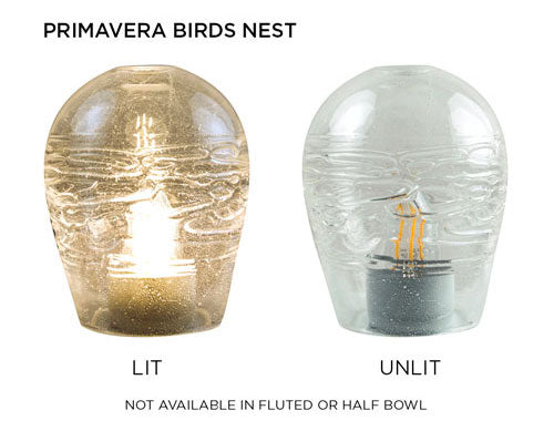 Primavera Birds Nest