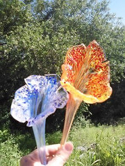 Hand blown glass lilies