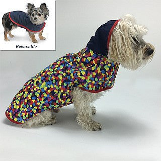 EXCLUSIVE BOX ADD-ON  Colorful Rain Slicker by Cloak & Dawggie - Many Sizes Available