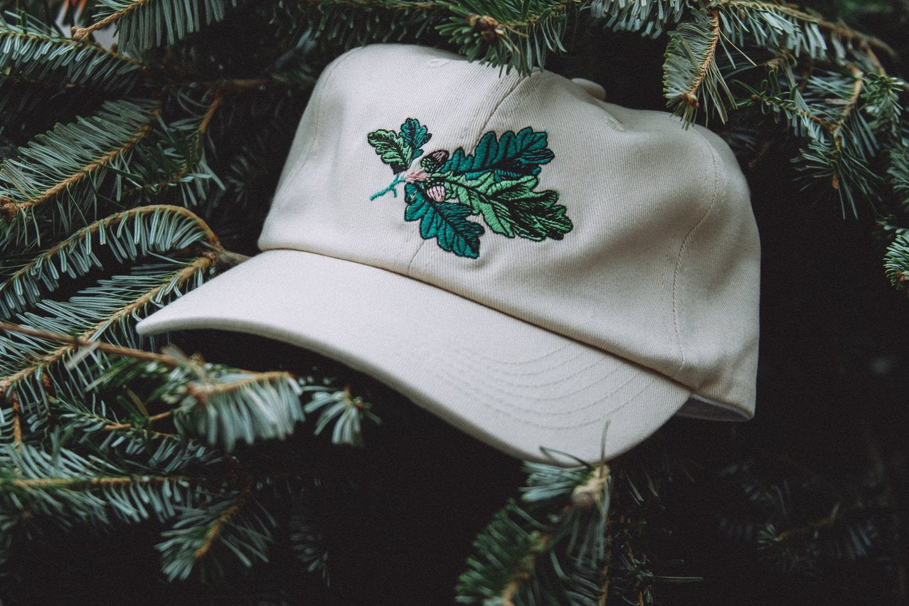 antler & woods Acorn Dad Hat