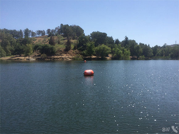 CP Explorations - Puddingstone Reservoir
