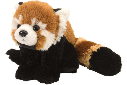 Cuddlekins Mini Red Panda (8 in) by The Wild Republic