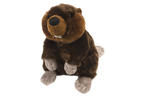 Cuddlekins Beaver (12 in) by The Wild Republic