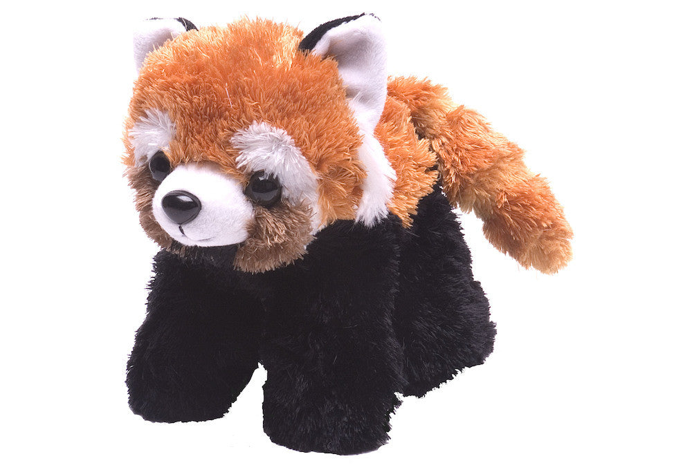 Hug 'ems Red Panda  (7 in) by The Wild Republic