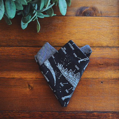 Little Man Pocket Square || Prehistoric || Lord and Lady