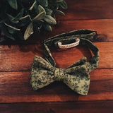 Belgrave Bow Tie - Lord and Lady