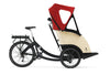 Triobike Taxi - Promovec Hub drive-Cycling without age-Triobike-Bicycle Junction