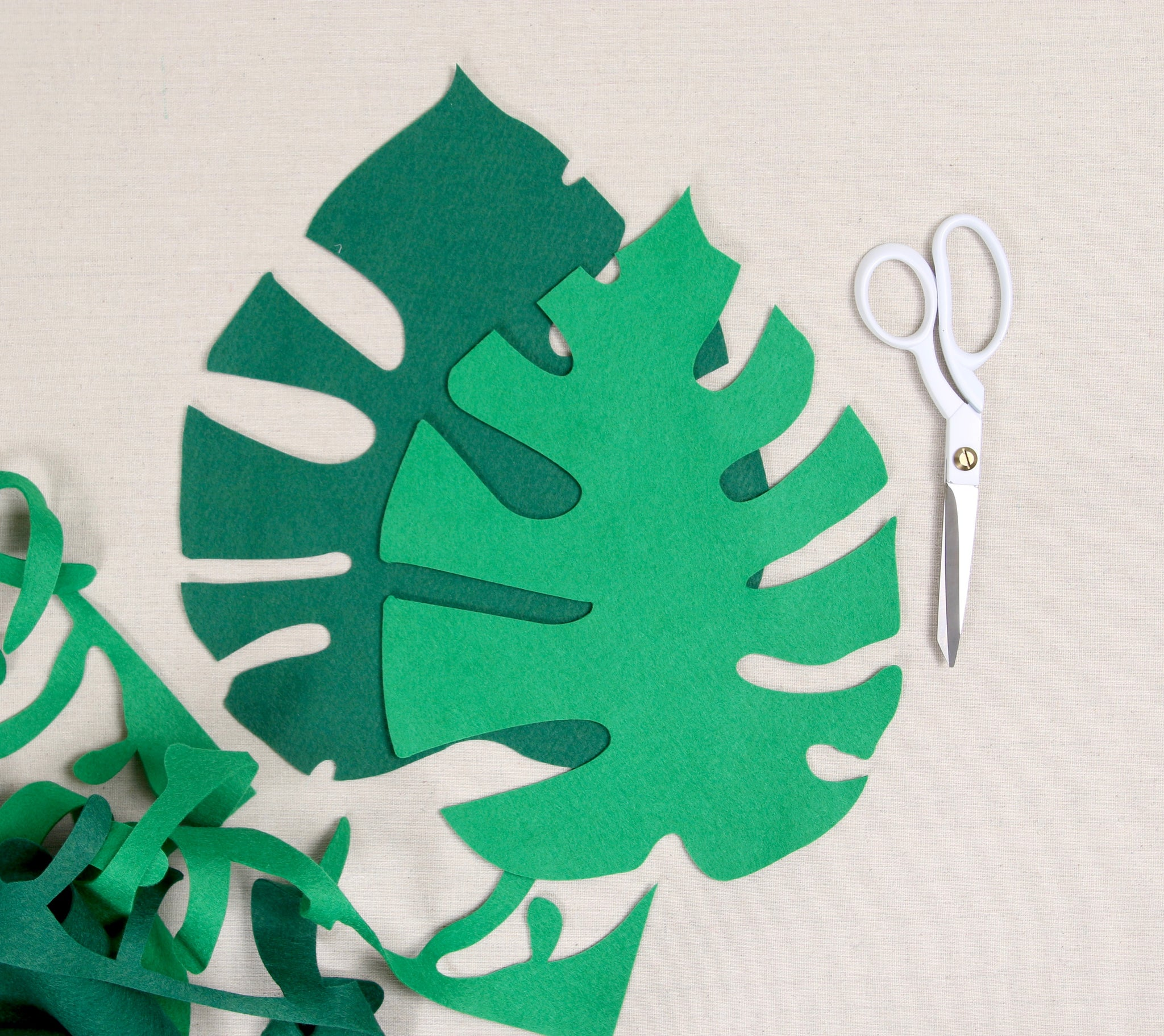 felt monstera leaf directions