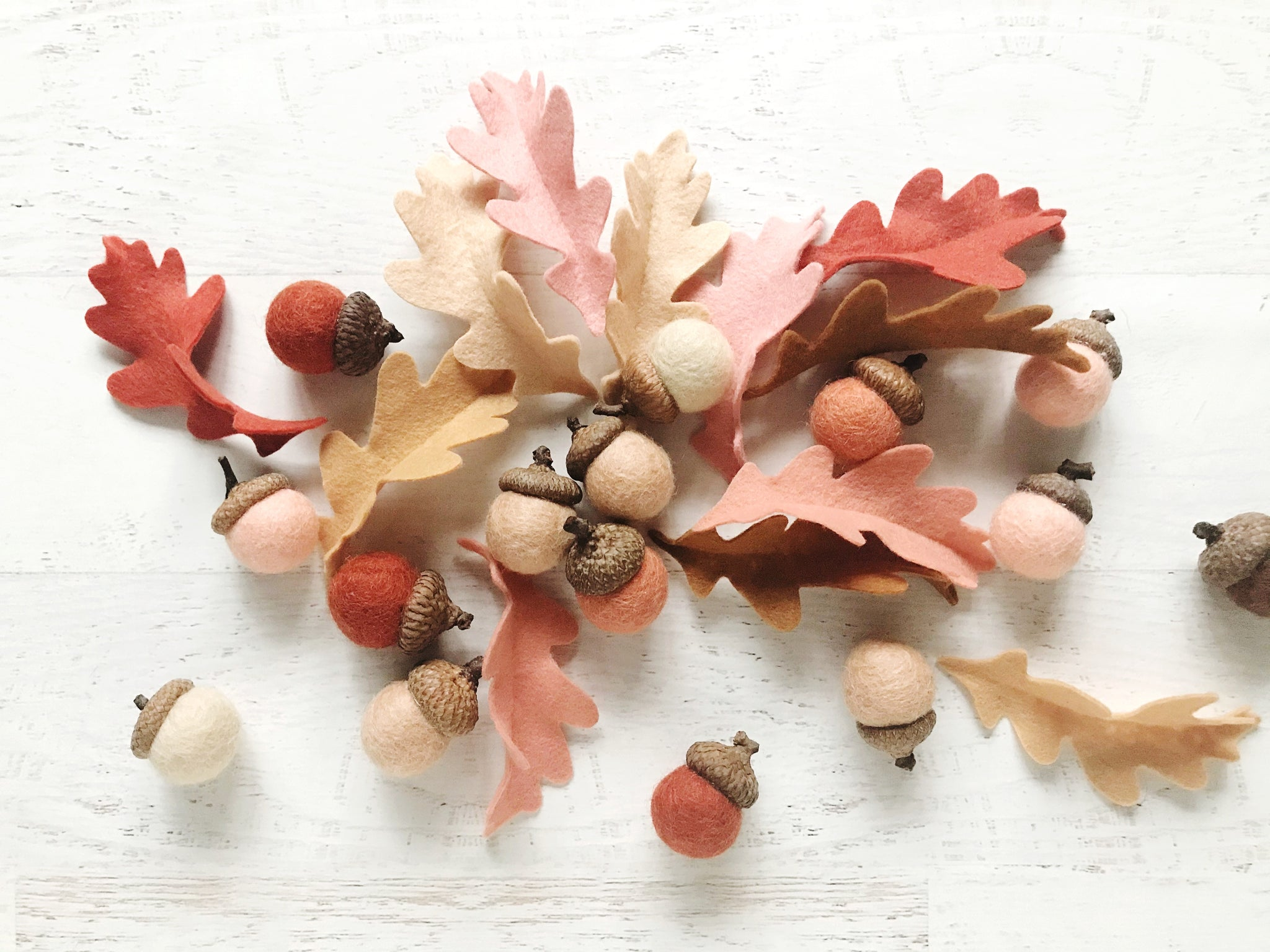 Completed Acorns and Leaves