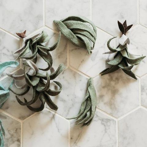 Trio of Air Plants, Advanced PDF Pattern