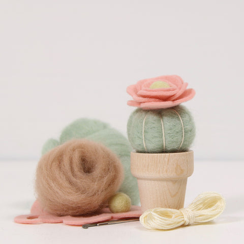 Needle Felting Kit, Desert Rose