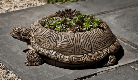 Campania International Large Turtle Planter Kendall and Everett