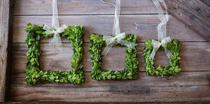 Mills Floral Preserved Boxwood Square Wreath Set with Ribbon