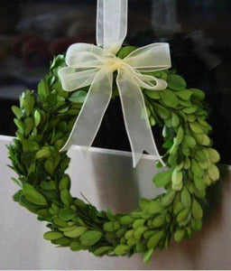 Mills Floral Preserved Boxwood 8-inch Round Wreath with Ribbon Set Kendall and Everett